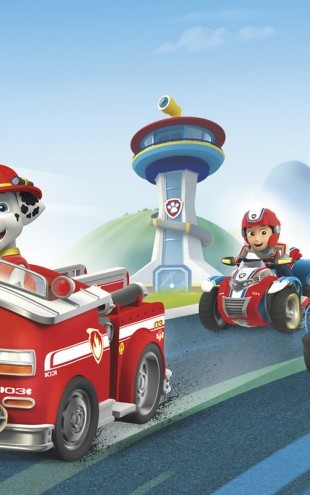 PHOTOWALL / PAW Patrol - Ready for Action (e60008)