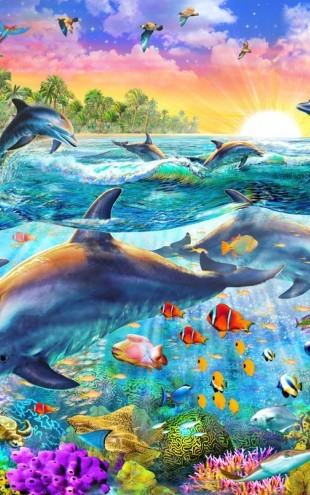 PHOTOWALL / Tropical Dolphins (e312177)