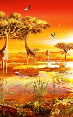 PHOTOWALL / Savanna Sundown (e312178)