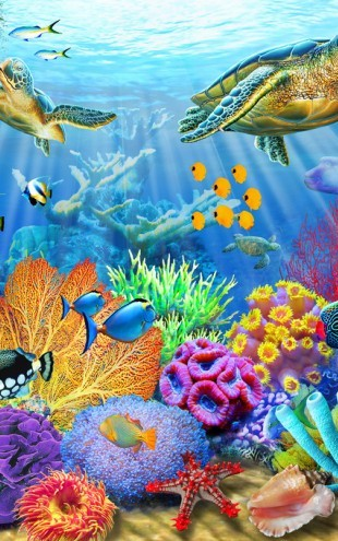 PHOTOWALL / Turtle Coral Reef (e312190)