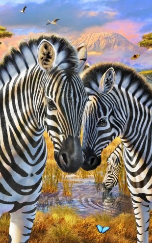 PHOTOWALL / Loving Zebras (e312193)