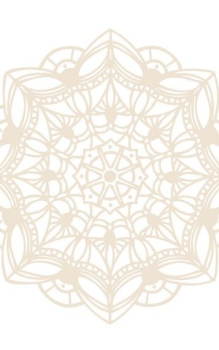 PHOTOWALL / Contemporary Lace Neutral II (e312244)