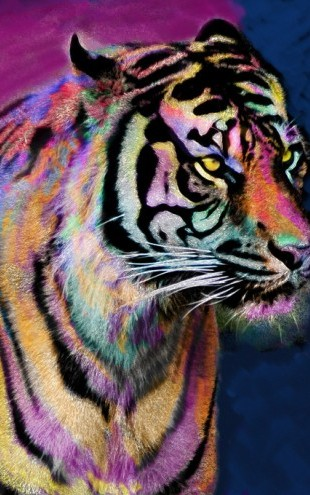 PHOTOWALL / Rainbow Tiger (e312366)