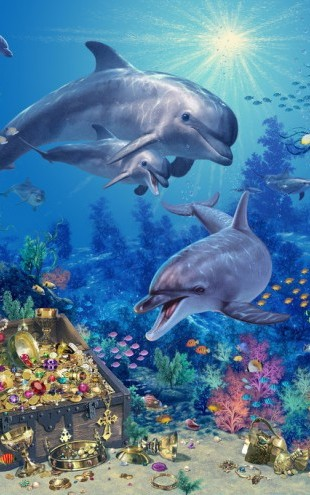 PHOTOWALL / Dolphin Family (e312805)