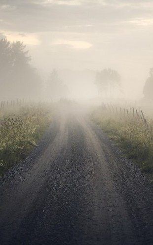 PHOTOWALL / Misty Rural Road (e313041)