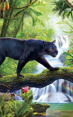 PHOTOWALL / Panther In Jungle (e312794)