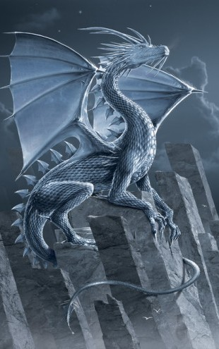 PHOTOWALL / Silver Dragon (e313855)