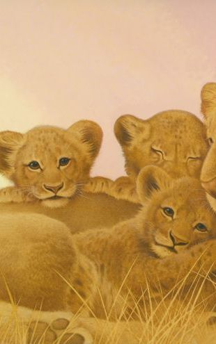 PHOTOWALL / Lioness Cubs (e312610)