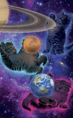 PHOTOWALL / Cosmic Kittens (e313834)