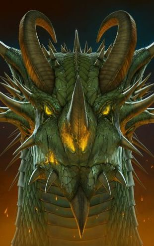 PHOTOWALL / Dragon Portrait (e313839)