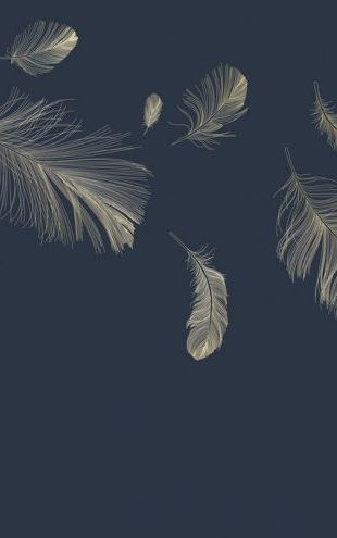 PHOTOWALL / Flying Feathers - Blue (e318450)