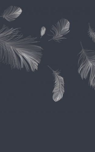 PHOTOWALL / Flying Feathers - Dark Blue (e318452)