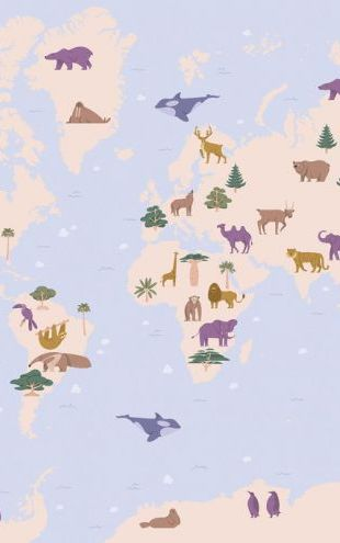 PHOTOWALL / Animal World Map (e319159)