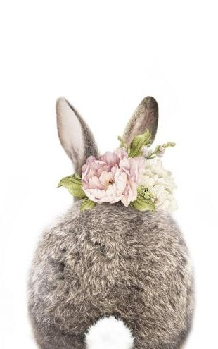 PHOTOWALL / Floral Bunny - Tail (e322224)