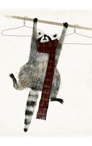 PHOTOWALL / Rascally Raccoon (e324712)