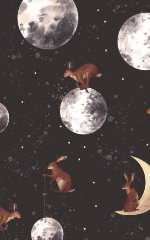 PHOTOWALL / Rabbits on the Moon (e327700)