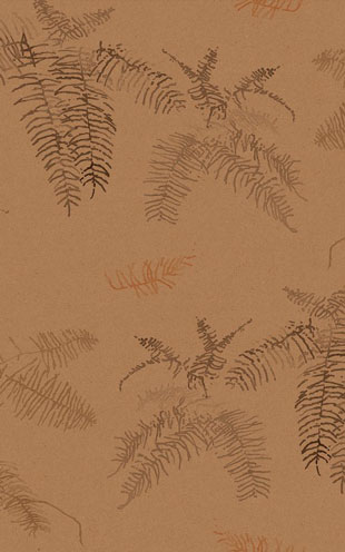 Quercus&Co. The Coastland II Collection Coral Fern Copper