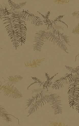 Quercus&Co. The Coastland II Collection Coral Fern Dark Tan