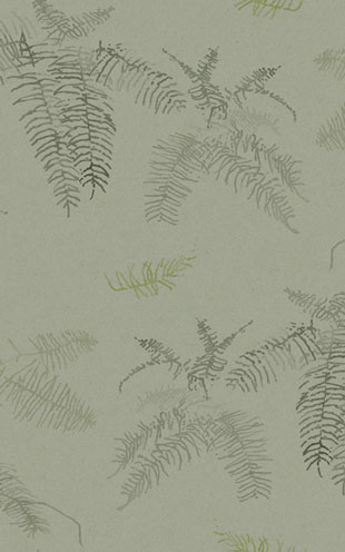 Quercus&Co. The Coastland II Collection Coral Fern Tea Green