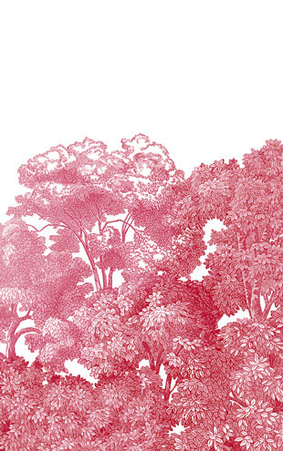 Rebel Walls #3 Greenhouse / Bellewood Crimson Toile R13056